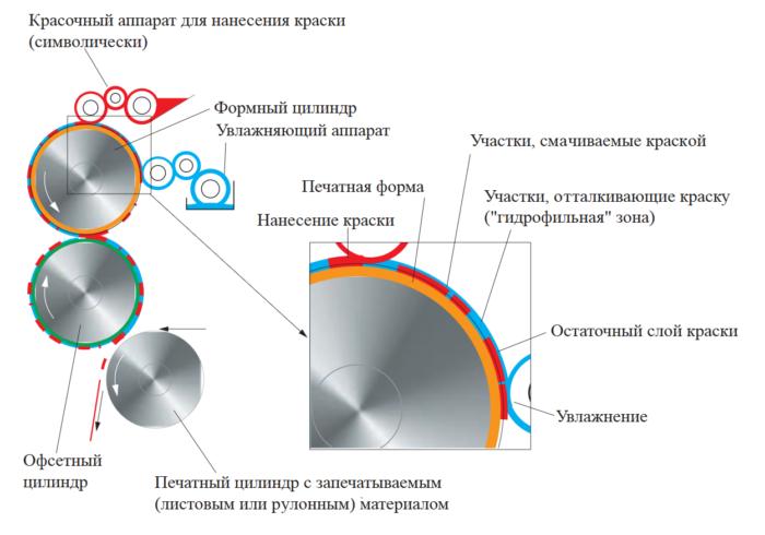 На изображении схема и принцип работы офсетной печати