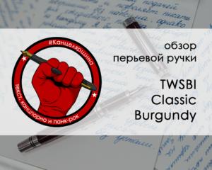 TWSBI Classic обойка обзора